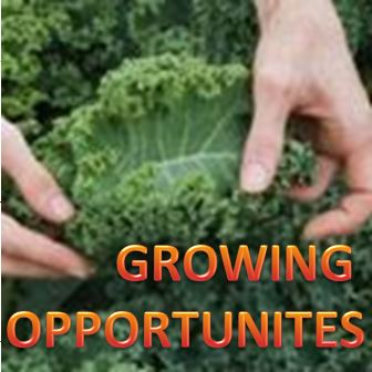 Growing Opportunities